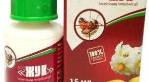 Инсектицид АТО Жук фото