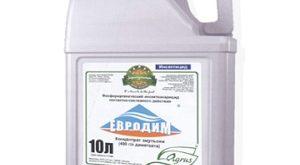 Инсектицид Евродим фото