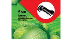 Инсектицид Семпай фото