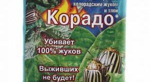 Инсектицид Корадо фото