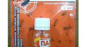 Инсектицид Палач фото